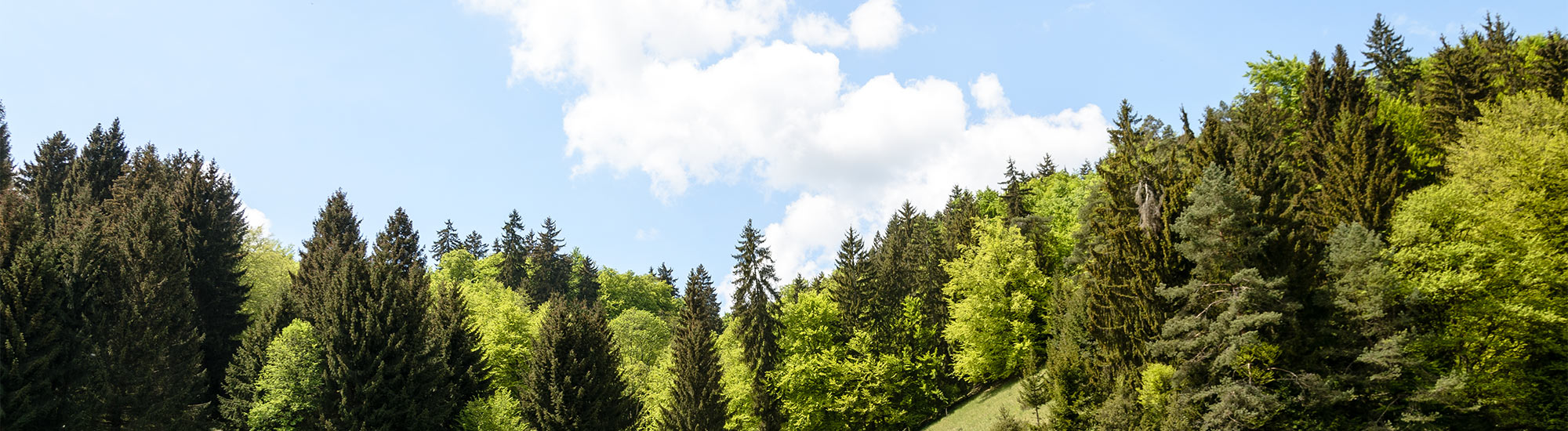 Naturpark-Altmuehltal3